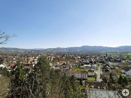 Panorama Wyhlen